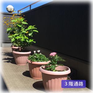 吉祥寺本町法律事務所サブイメージ2