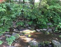 井の頭池お茶の水