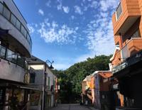 七井橋通り